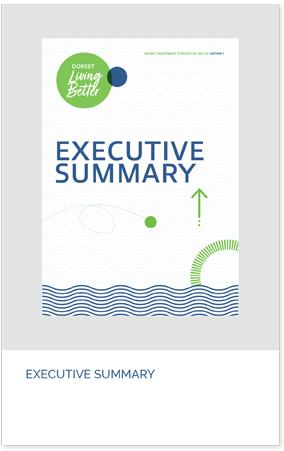 executive-summary-pdf