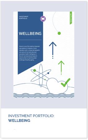 wellbeing pdf